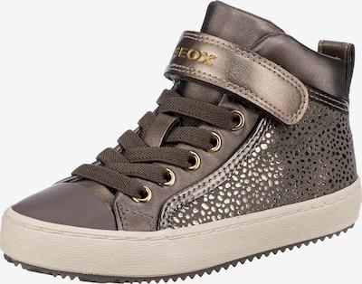 GEOX Kids Sneaker 'Kalispera' in taupe / silber, Produktansicht