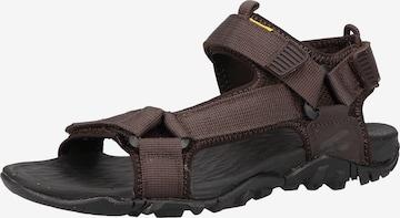 Sandales de randonnée CAMEL ACTIVE en marron