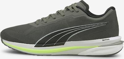 PUMA Schuh in graphit, Produktansicht