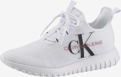 Calvin Klein Sneaker in rot / schwarz / weiß, Produktansicht