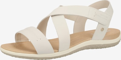 GEOX Sandalen in weiß, Produktansicht