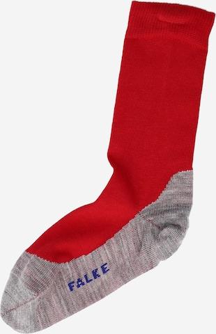 FALKE Socks 'Sunny Days' in Red