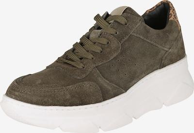 COX Trend-Sneaker in grün / khaki, Produktansicht