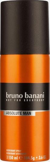 BRUNO BANANI Deodorant 'Absolute Man' in orange, Produktansicht