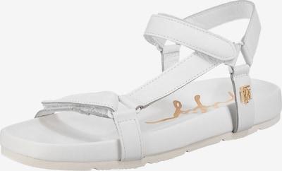 TOMMY HILFIGER Trekinga sandales Zelts / balts, Preces skats