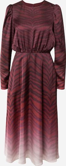 Ted Baker Kleid 'Banarni' in rot / weinrot / weiß, Produktansicht