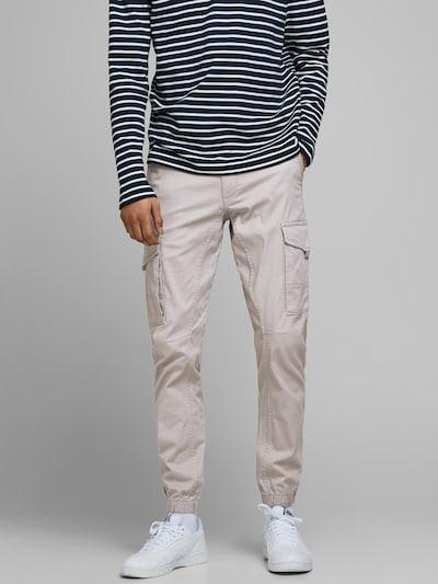 JACK & JONES Παντελόνι cargo 'Paul Flake' σε ανοικτό γκρι, Άποψη μοντέλου