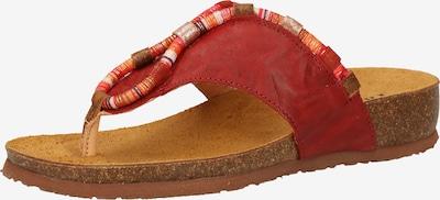 THINK! Zehentrenner in mischfarben / rot, Produktansicht
