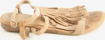 COX Riemchen-Sandalen in 36 in Beige