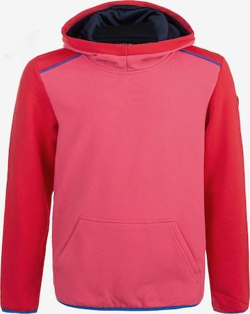 ZigZag Kapuzensweatshirt 'FINK' in Pink