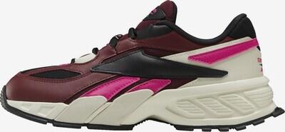 Reebok Classic Sneakers laag in de kleur Donkerlila / Pink / Zwart / Wit: Vooraanzicht