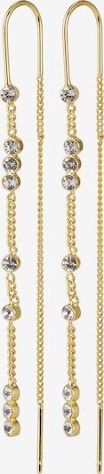 Pilgrim Σκουλαρίκια 'Kamari' σε χρυσό / διαφανές, Άποψη προϊόντος