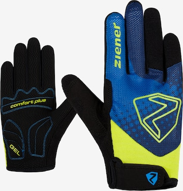 ZIENER Athletic Gloves 'Colja' in Mixed colors