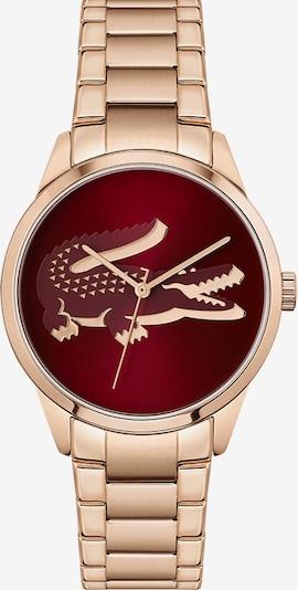 LACOSTE Uhr in rosegold / burgunder, Produktansicht