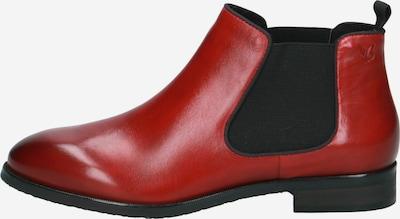 CAPRICE Chelsea Boot in rot, Produktansicht