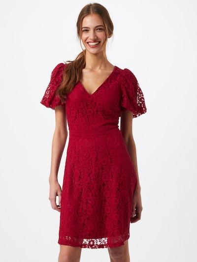 Dorothy Perkins Kleid in rot, Modelansicht