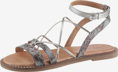 TAMARIS Sandalen met riem in de kleur Bessen / Zilver, Productweergave