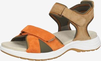 ARA Sandale in braun / grün / orange, Produktansicht