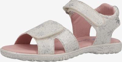 RICHTER Sandalen in de kleur Zilver / Wit, Productweergave
