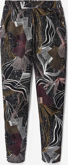 CALIDA Jogginghose in schwarz, Produktansicht