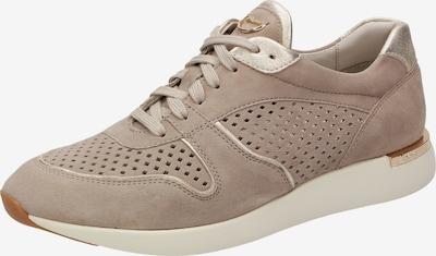 SIOUX Sneaker ' Malosika-705 ' in beige / gold, Produktansicht