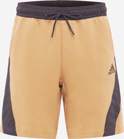 Pantaloni sport ADIDAS PERFORMANCE pe maro / negru, Vizualizare produs