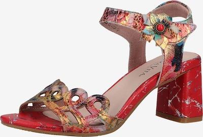 Laura Vita Slingpumps in de kleur Gemengde kleuren / Rood, Productweergave
