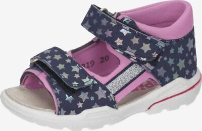 Pepino Sandale 'Kaia' in navy / pink, Produktansicht