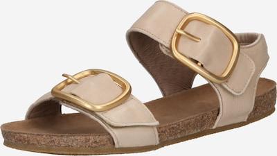 Ca Shott Sandale in beige, Produktansicht