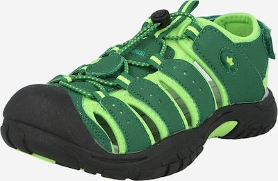 LICO Sandále 'Nimbo' - zelená / limetová, Produkt