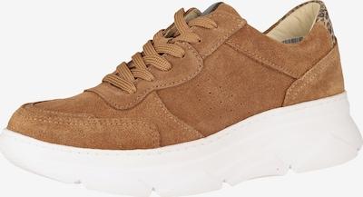 COX Sneaker in braun / hellbraun, Produktansicht