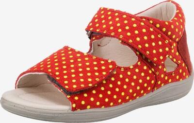 Pepino Sandalen in hellorange / weiß, Produktansicht