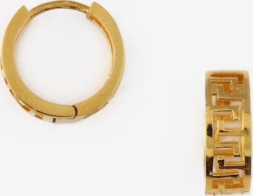 Orelia Earrings in Gold