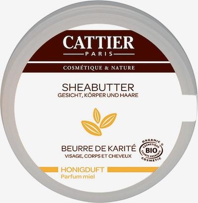Cattier Sheabutter in weiß, Produktansicht