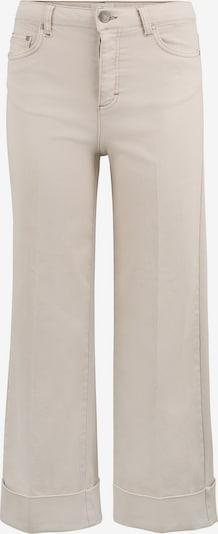 FIVEUNITS Jeans 'Abby High Flex 686' in grau, Produktansicht
