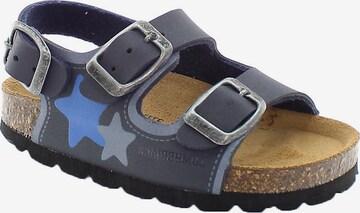 Lumberjack Sandale in Blau