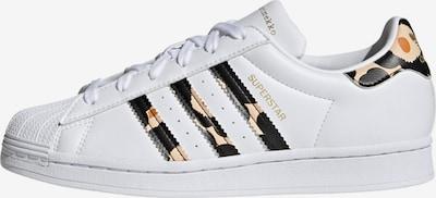 ADIDAS ORIGINALS Sneaker 'Superstar' in nude / schoko / gold / weiß, Produktansicht