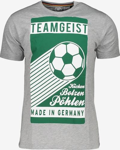 DFB T-Shirt in grau: Frontalansicht
