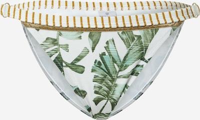 watercult Bikinibroek in de kleur Oker / Brons / Groen / Jade groen / Wit, Productweergave