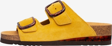 SCHOLL Pantolette 'Ilary ' in Yellow