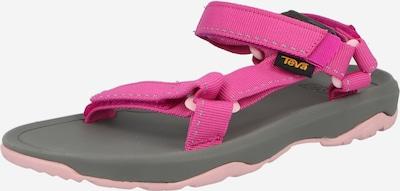 TEVA Open schoenen in de kleur Lichtgrijs / Donkergrijs / Pink, Productweergave