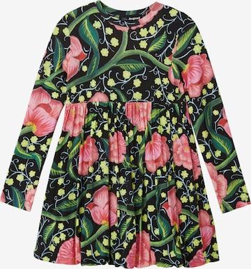 Desigual Kleit, värv segavärvid