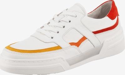 GABOR Sneaker in gelb / orange / rot, Produktansicht