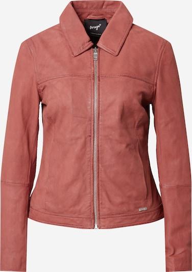 Maze Starpsezonu jaka, krāsa - rožkrāsas, Preces skats