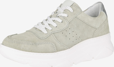 COX Sneaker in grau, Produktansicht