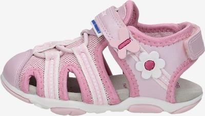 GEOX Sandalen in de kleur Pink, Productweergave