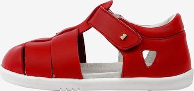 Bobux Sandalen in rot, Produktansicht