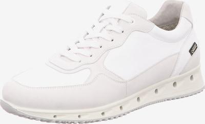 FRETZ MEN Sneaker in weiß / wollweiß, Produktansicht