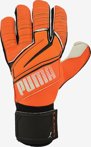PUMA Handschuh in Orange