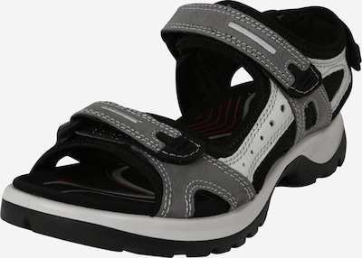 ECCO Sandales de randonnée en gris / noir, Vue avec produit